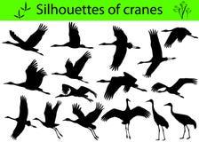 Σκιαγραφίες των γερανών Απεικόνιση αποθεμάτων