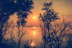 Σκιαγραφίες των ξύλων στο θερινό ζωηρόχρωμο ηλιοβασίλεμα Compositi φύσης Στοκ φωτογραφία με δικαίωμα ελεύθερης χρήσης