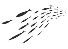 Σκιαγραφίες των ομάδων ψαριών θάλασσας Αποικία των μικρών ψαριών Εικονίδιο με taxers ποταμών Στοκ Εικόνες