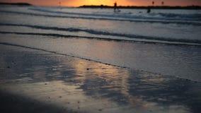 Σκιαγραφίες των φοινίκων ενάντια στη θάλασσα, ηλιοβασίλεμα απόθεμα βίντεο