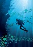 σκιαγραφίες ψαριών δυτών Διανυσματική απεικόνιση
