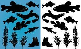 σκιαγραφίες ψαριών Στοκ φωτογραφίες με δικαίωμα ελεύθερης χρήσης
