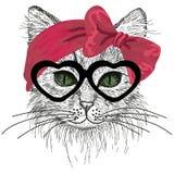 Σκιαγραφημένη γάτα με τα πράσινα μάτια, τα γυαλιά και το τόξο τρίχας Στοκ Εικόνα