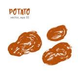 Σκιαγραφημένη φυτική απεικόνιση της πατάτας Στοκ Εικόνες