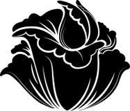 Σκιαγραφημένο λουλούδι Στοκ εικόνα με δικαίωμα ελεύθερης χρήσης