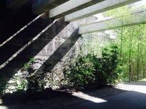 Σκιερός τοίχος Στοκ Εικόνες
