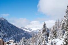 σκι θερέτρου Στοκ Εικόνες