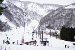σκι θερέτρου Στοκ Εικόνα