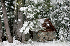 σκι σαλέ Στοκ Εικόνες