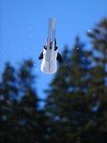 σκι Στοκ εικόνα με δικαίωμα ελεύθερης χρήσης
