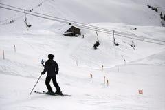 σκι Στοκ εικόνες με δικαίωμα ελεύθερης χρήσης