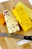 Σκληρό τυρί Στοκ Εικόνες