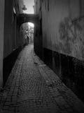 σκοτάδι αλεών Στοκ εικόνα με δικαίωμα ελεύθερης χρήσης