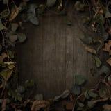 Σκοτάδι συνόρων αμπέλων παραμυθιού φαντασίας απεικόνιση αποθεμάτων
