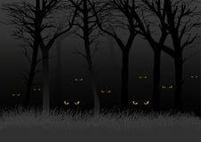 σκοτεινά δάση Στοκ εικόνες με δικαίωμα ελεύθερης χρήσης