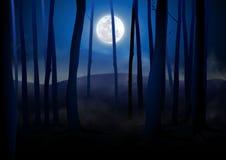 σκοτεινά δάση ελεύθερη απεικόνιση δικαιώματος