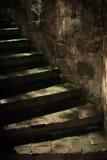 Σκοτεινά παλαιά πέτρινα σκαλοπάτια Στοκ Φωτογραφίες