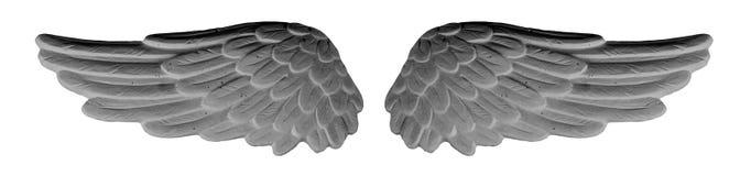 Σκοτεινά φτερά ασβεστοκονιάματος Στοκ φωτογραφία με δικαίωμα ελεύθερης χρήσης