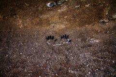 σκοτεινά χέρια Στοκ εικόνες με δικαίωμα ελεύθερης χρήσης