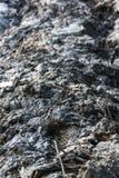 σκοτεινή λάσπη Στοκ φωτογραφία με δικαίωμα ελεύθερης χρήσης