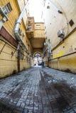 σκοτεινή πύλη παλαιά θόλος Isaac Πετρούπολη Ρωσία s Άγιος ST καθεδρικών ναών Στοκ Εικόνες