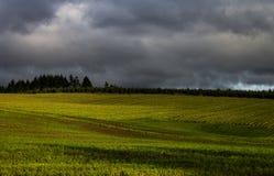 σκοτεινή δραματική θύελλα σύννεφων Στοκ Εικόνα