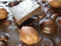Σκοτεινή σοκολάτα με τα καρύδια μέσα Φουντούκι στη σοκολάτα Ένα κομμάτι της σοκολάτας Στοκ φωτογραφία με δικαίωμα ελεύθερης χρήσης