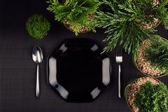 Σκοτεινή σύγχρονη minimalistic χλεύη επιλογών εστιατορίων Eco επάνω με το μαύρο στιλπνό πιάτο, κουτάλι, δίκρανο, πράσινες εγκατασ Στοκ Εικόνα