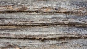 Σκοτεινή σύσταση ενός αρχαίου ξύλινου τοίχου που χτίζεται των κούτσουρων και του βρύου, α Στοκ Φωτογραφίες