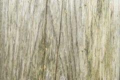 Σκοτεινή σύσταση του παλαιού φυσικού ξύλου με τις ρωγμές από την έκθεση στον ήλιο και τον αέρα Στοκ φωτογραφία με δικαίωμα ελεύθερης χρήσης