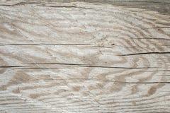 Σκοτεινή σύσταση του παλαιού φυσικού ξύλου με τις ρωγμές από την έκθεση στον ήλιο και τον αέρα Στοκ Εικόνες