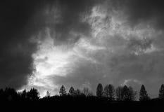 Σκοτεινοί ουρανός και δέντρα Στοκ εικόνες με δικαίωμα ελεύθερης χρήσης