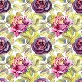 r Σκοτεινός αυξήθηκε λουλούδια, πράσινα φύλλα r Συνθέσεις Watercolor στοκ εικόνες