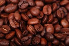 σκοτεινός βασικός χαμηλός καφέ φασολιών Στοκ Εικόνες