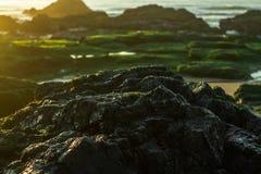 Σκοτεινός γκρίζος βράχος με το όμορφο πράσινο υπόβαθρο βρύου και μια φλόγα ήλιων στοκ φωτογραφία με δικαίωμα ελεύθερης χρήσης