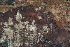 Σκοτεινός καφετής βρώμικος λεπιοειδής shabby στόκος στον τοίχο Ραγισμένη περίληψη σύσταση τοίχων Παλαιό εκλεκτής ποιότητας stucco στοκ εικόνες