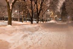 σκοτεινός παγωμένος χειμώνας πάρκων νύχτας Στοκ εικόνα με δικαίωμα ελεύθερης χρήσης