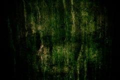 Σκοτεινός συμπαγής τοίχος με το πράσινο βρύο, τις ατέλειες και τη φυσική σύσταση τσιμέντου ως σύσταση υποβάθρου με σκοτεινό vigne Στοκ Φωτογραφίες