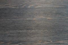 σκοτεινό δάσος σύστασης Στοκ εικόνα με δικαίωμα ελεύθερης χρήσης