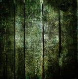 σκοτεινό διανυσματικό δάσος ανασκόπησης Πράσινη παλαιά ξύλινη μακροεντολή σύστασης Στοκ Εικόνες