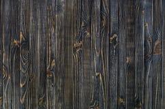 σκοτεινό διανυσματικό δάσος ανασκόπησης Στοκ Φωτογραφία