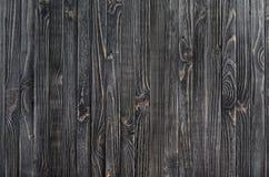 σκοτεινό διανυσματικό δάσος ανασκόπησης Στοκ εικόνα με δικαίωμα ελεύθερης χρήσης