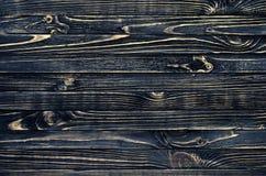 σκοτεινό διανυσματικό δάσος ανασκόπησης Στοκ Εικόνα