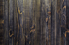 σκοτεινό διανυσματικό δάσος ανασκόπησης Στοκ εικόνες με δικαίωμα ελεύθερης χρήσης