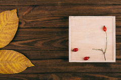 Σκοτεινό ξύλινο κιβώτιο με το υπόβαθρο και τις διακοσμήσεις Στοκ Φωτογραφία