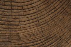 Σκοτεινό χρωματισμένο ξύλινο υπόβαθρο πεύκων Στοκ φωτογραφία με δικαίωμα ελεύθερης χρήσης