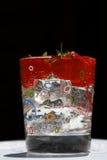 σκοτεινό ύδωρ φραουλών πά&gamma Στοκ Εικόνες