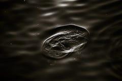 σκοτεινό ύδωρ Στοκ φωτογραφία με δικαίωμα ελεύθερης χρήσης