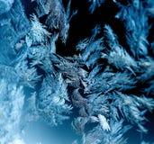 σκοτεινό hoarfrost Στοκ Εικόνες