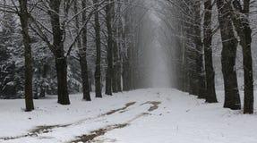 Σκοτεινό vista Στοκ εικόνα με δικαίωμα ελεύθερης χρήσης